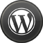 Custom WordPress Themes & Plugins